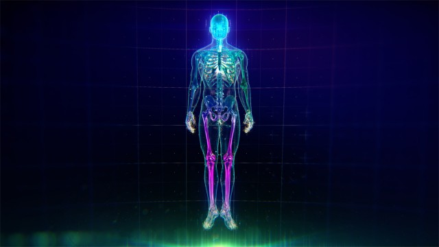 Colorful Human Body animation with flares and particles showing veins, bones, organs and skin. Plexus. Futuristic and Artistic concept of human anatomy. Full Body Circulatory System. 4K UHD