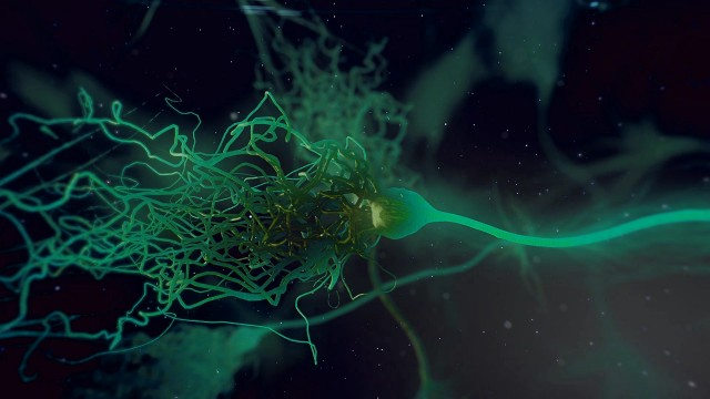 Glowing Neurone synapse network 3D animation.