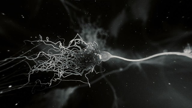 Microscopic Neurone synapse network 3D animation.