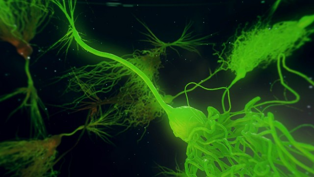Laser Green Neurone synapse network 3D animation