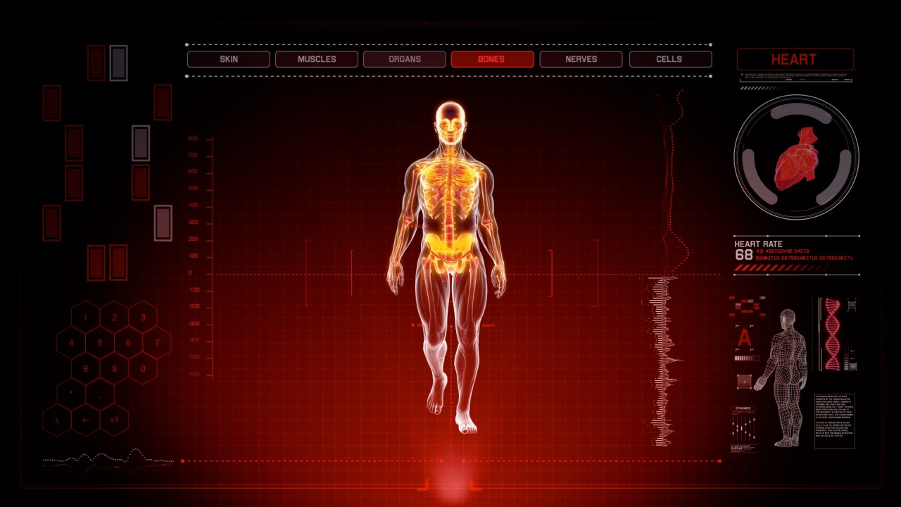 Futuristic Interface Display Of Full Body Scan With Human Anatomy Of
