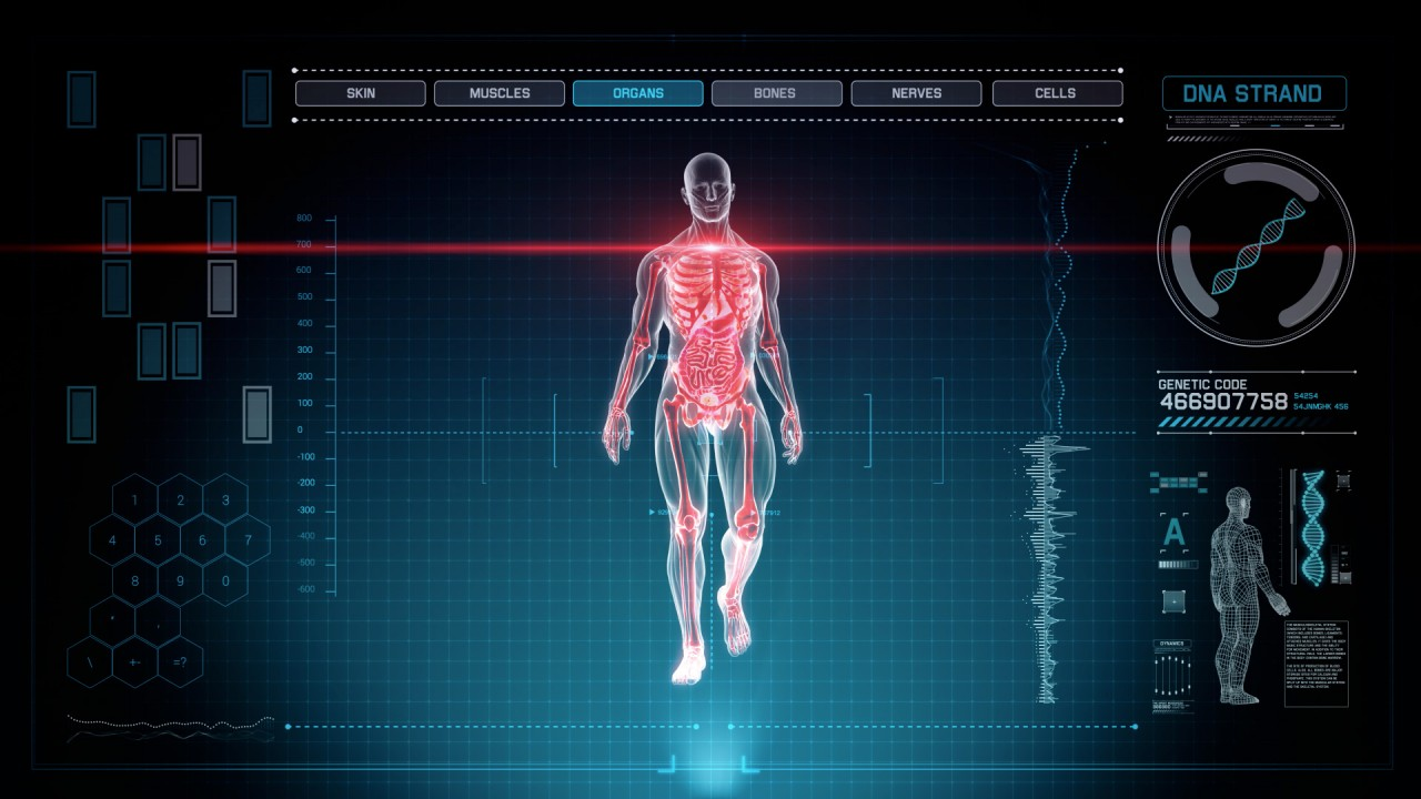 Futuristic Interface Display of Full Body Scan with Human Anatomy of ...
