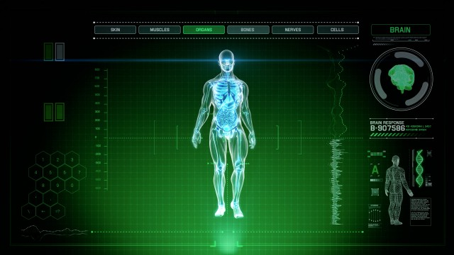 Green Futuristic Interface of Full Body Scan with Human Anatomy of Muscles, Bones and Organs
