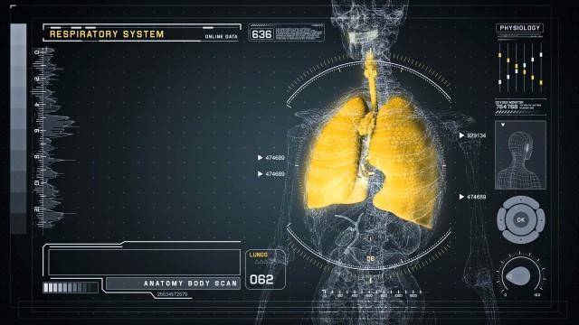 Respiratory Anatomy on Virtual Futuristic Wireframe Interface