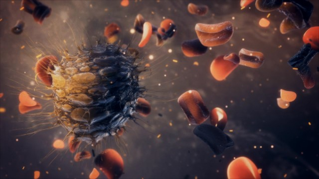 Cancer Cell attacking red blood cells. Human Organism cells under attack.