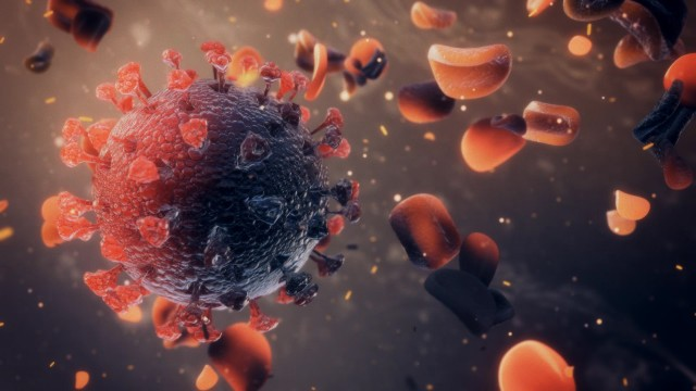 Mortal Virus Cell attacks red blood cells.