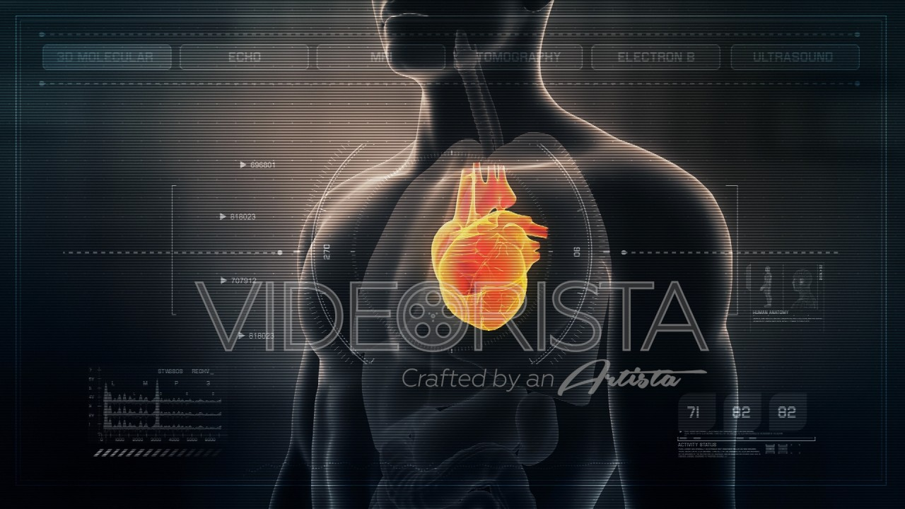 Futuristic Interface Display Of Human Male Heart Rotating On Medical
