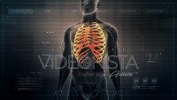 Anatomy of Human Male Rib Cage on Futuristic Medical Interface dashboard. Seamless Loop. Animation.