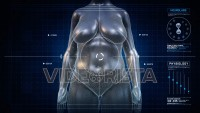Woman HOURGLASS Body Shape Anatomy Gaining Weight Futuristic animation - Slim to Fat Scan Interface