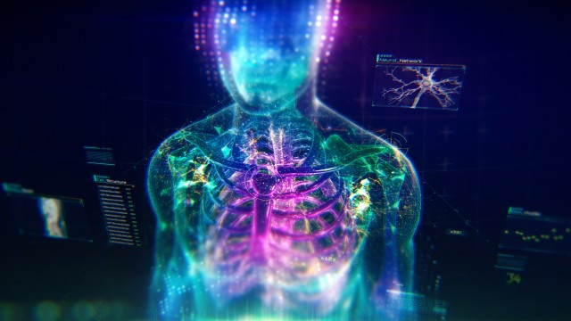 Colorful Human Body animation with infographics and particles showing bones, organs and skin.