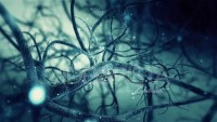 Green Neurone synapse network 3D animation.