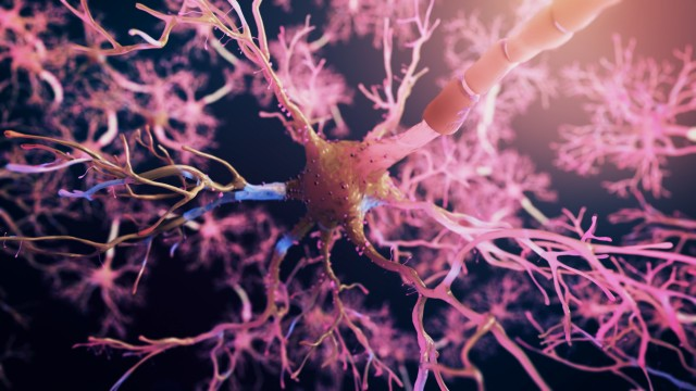 Realistic Neuron synapse network 3D animation. Infinite Loop