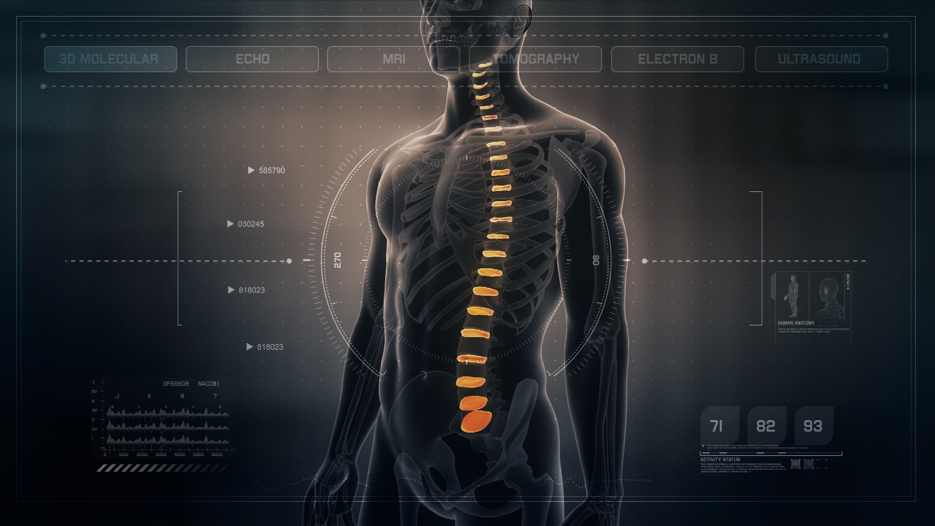Futuristic Interface Display Of Human Male Spinal Discs On Medical
